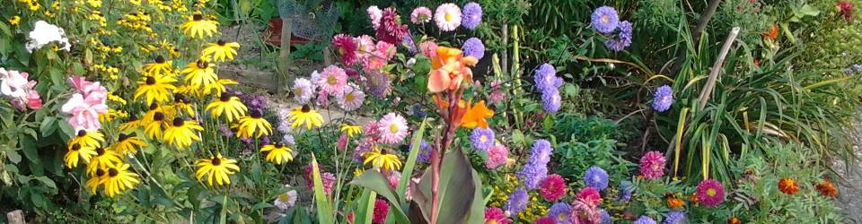 Gartenbau von Rath
